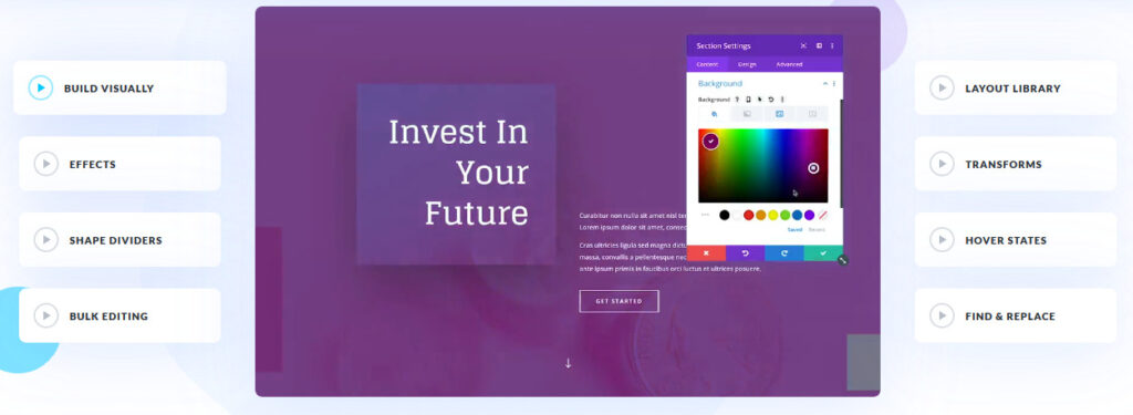 Main features of the Divi template.